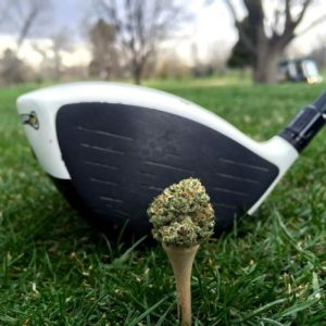 Canada's first marijuana-themed golf course to open in Ontario this spring