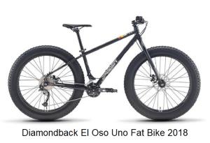 Diamondback El Oso Uno Fat Bike