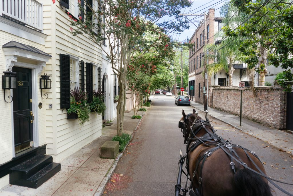 charleston sc, charleston weekend, charleston carriage ride
