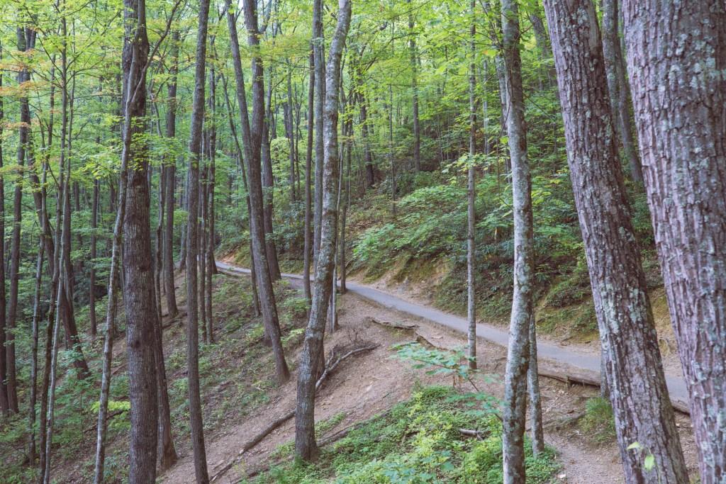 Gatlinburg, Smoky Mountains, Laurel Falls hike