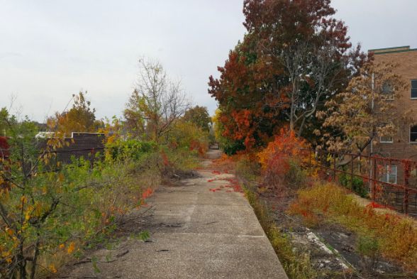 18 Urban Projects Like New York's High Line - reclaim rail & roads to parks - Staten Island Skyway