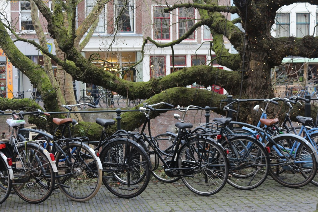 Things To Do in Utrecht - Utrecht is a charming city in the center of the Netherlands. There's lots to do including walking the lovely canals, shopping and museums! Let's go!