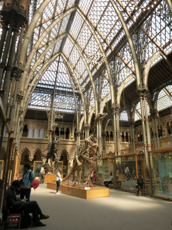 oxford natural history museum pitt rivers museum - Oxford is an historic university town with beautiful sights to see. Here are eight things you should see and do if you are in Oxford for a few days. - Weekend in Oxford