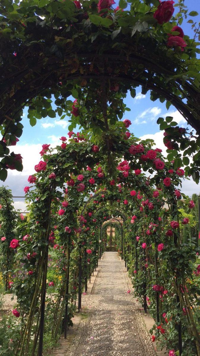 Generalife Gardens - 5 Great Granada Gardens