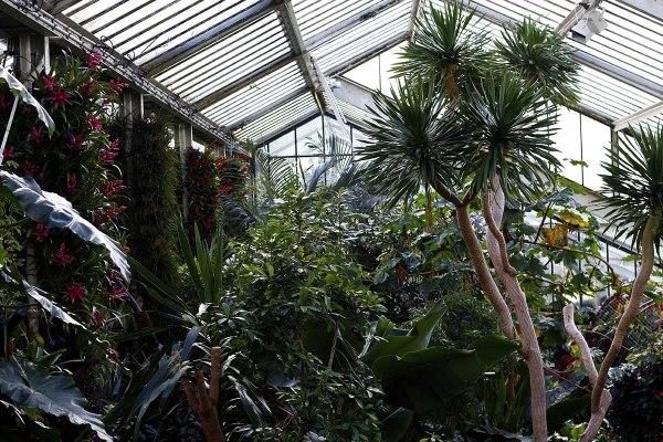 30+ Beautiful Botanical Gardens in the USA