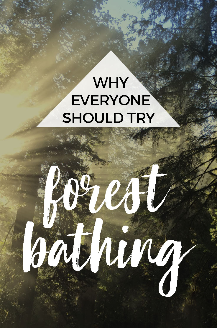 How (and Why) to Try Forest Bathing : The Benefits of Shinrin-yoku