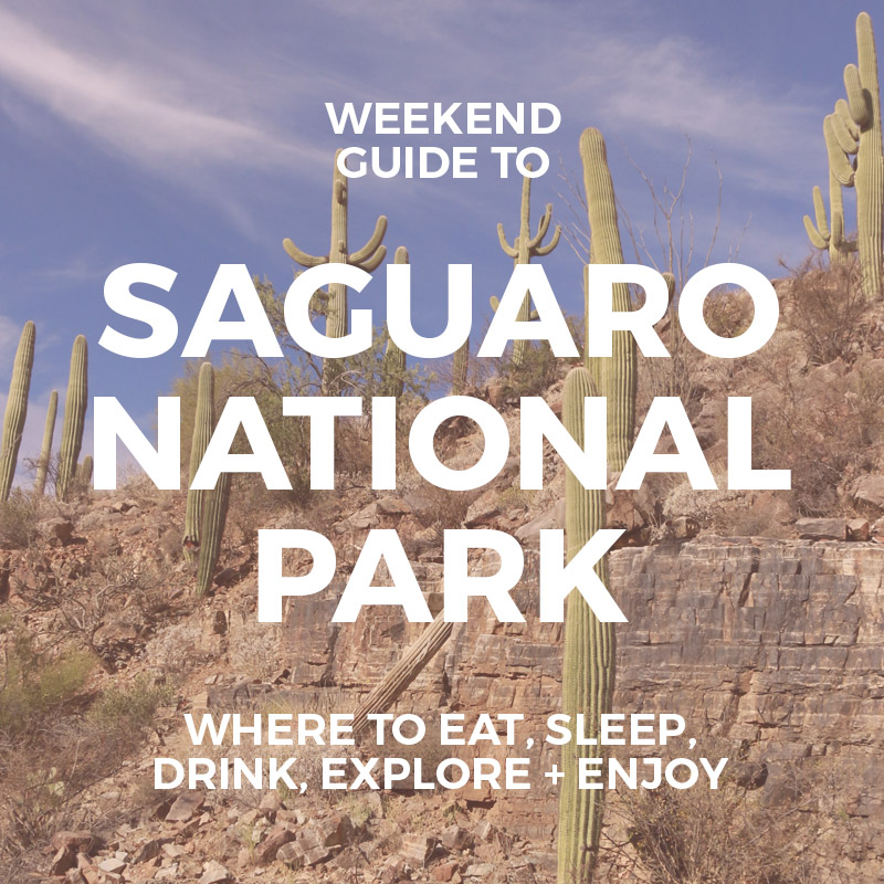 Things to Do in Saguaro National Park : Weekend Guide to Saguaro National Park : Best things to do and see AZ