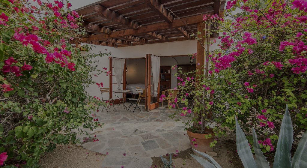Best Boutique Hotels Palm Springs & the Best Hotels in Palm Springs for Couples