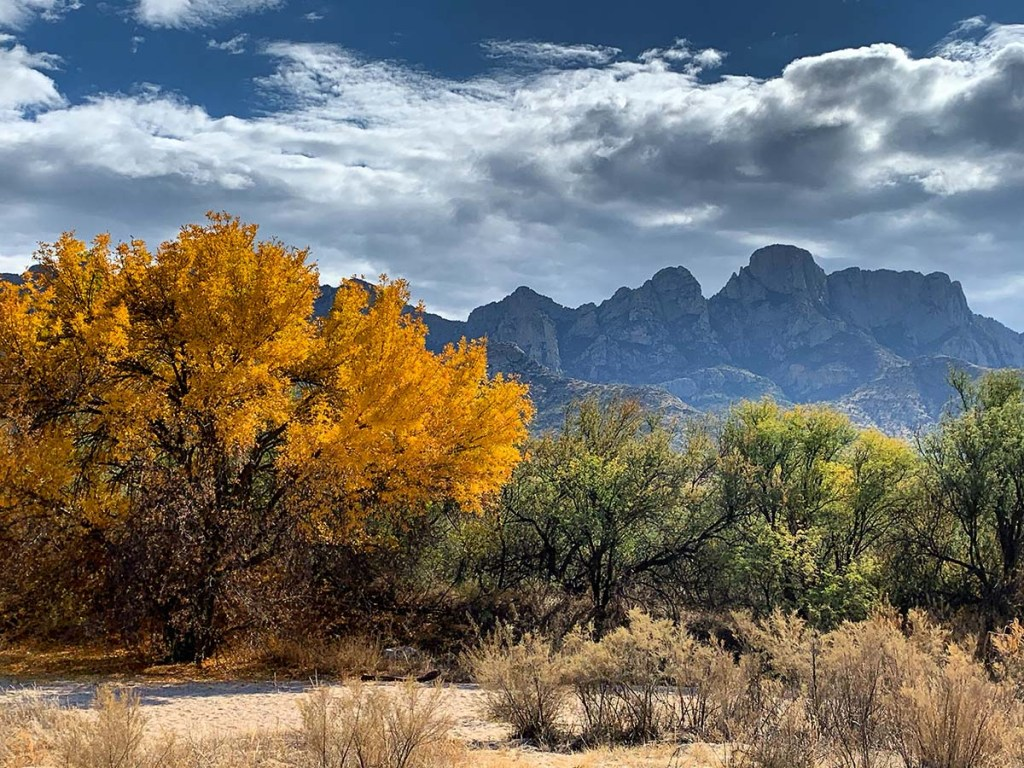 A travel guide to Tucson: Catalina State Park
