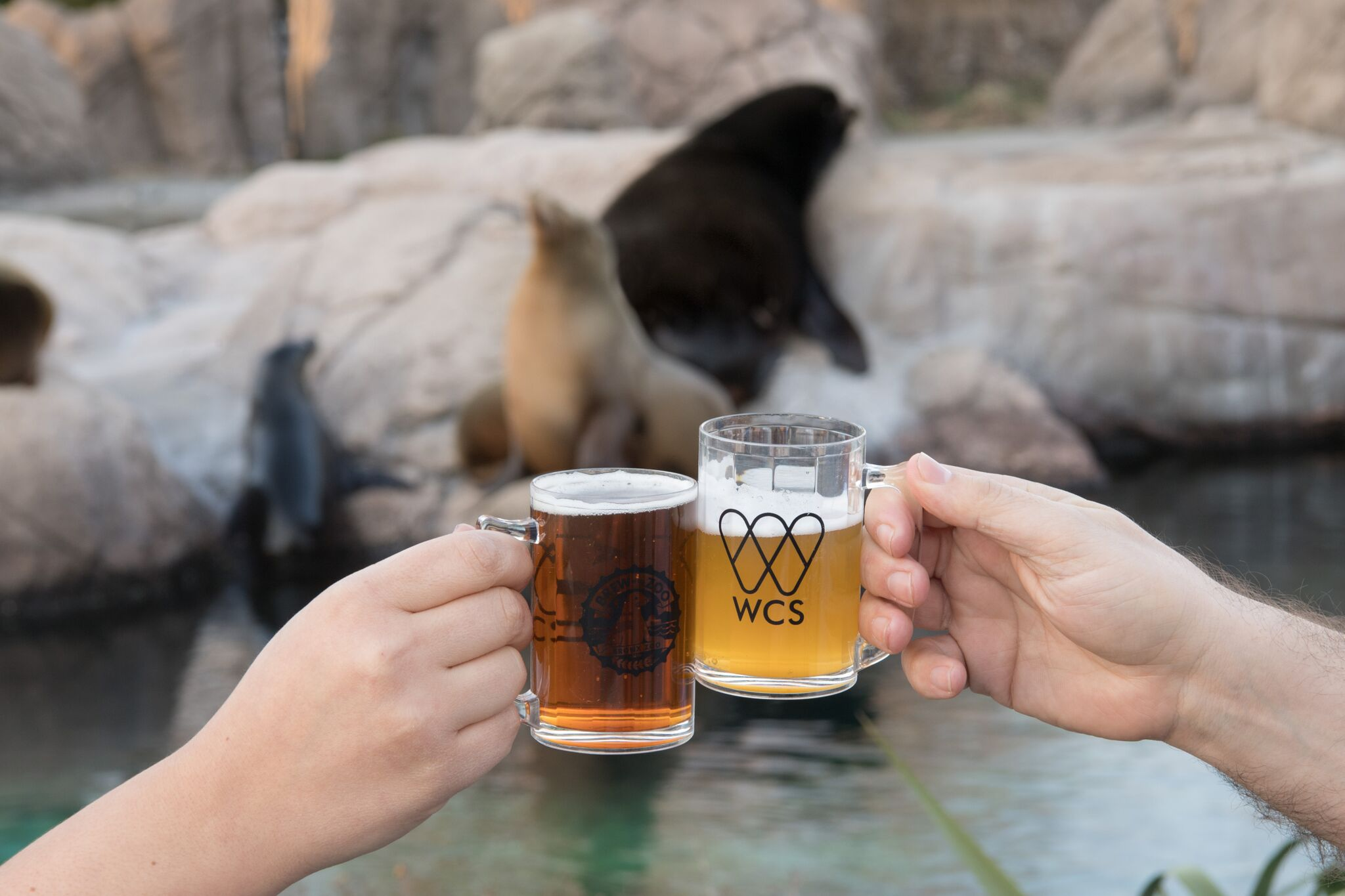 Brew at the Zoo at the Bronx Zoo for Adults
