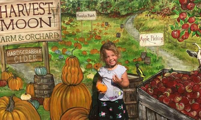 harvest moon apple picking pumpkins