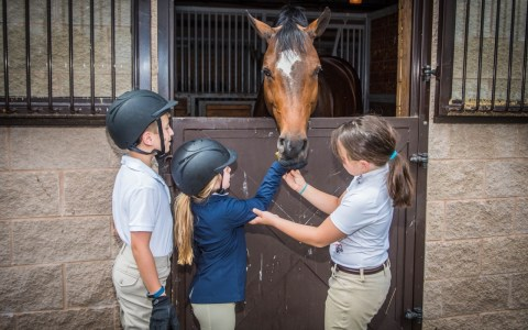 The Bergen Equestrian Center programs for kids