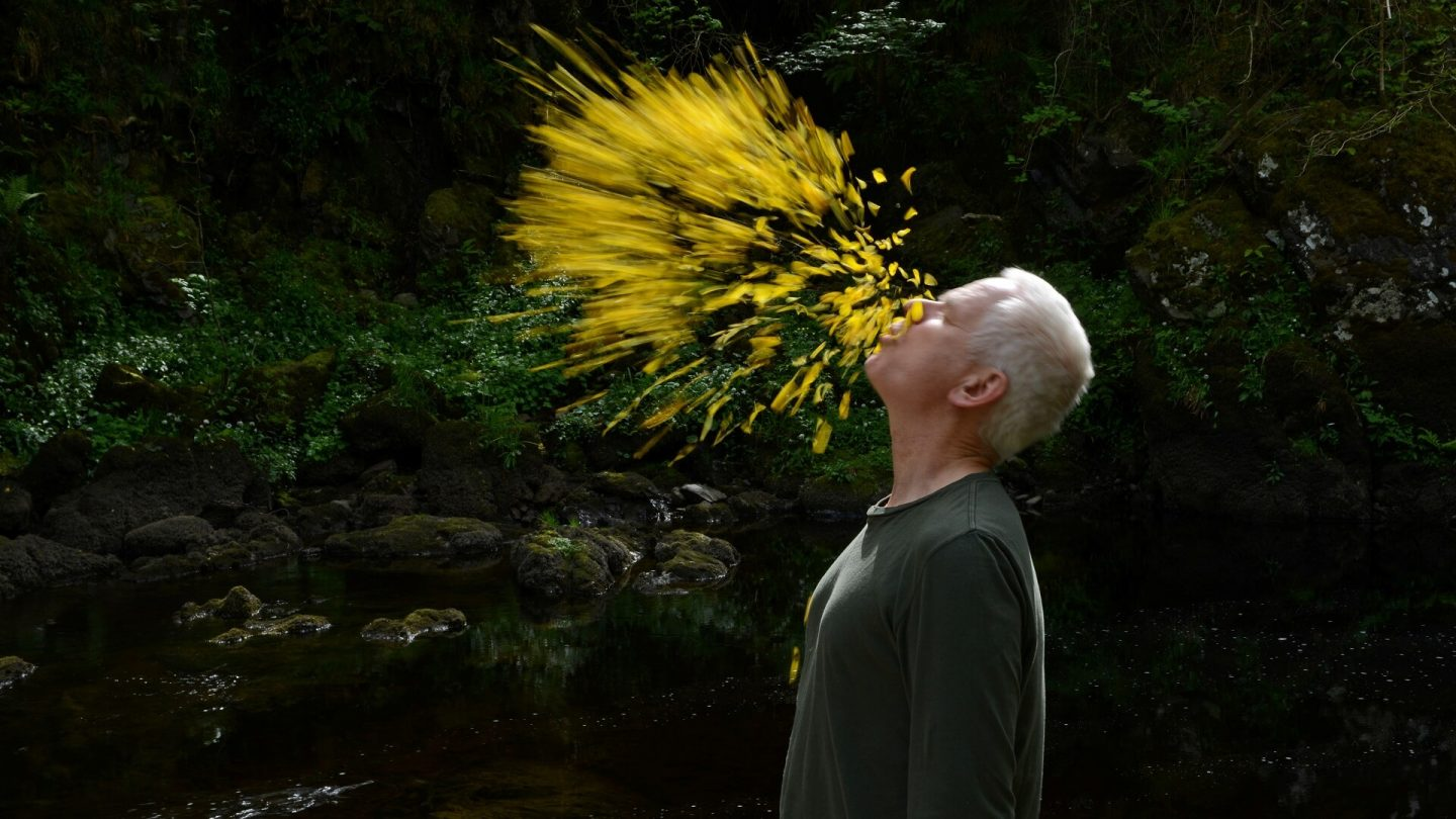 Meditative Life: Consciousness, Meaning and Connection leaning into the wind