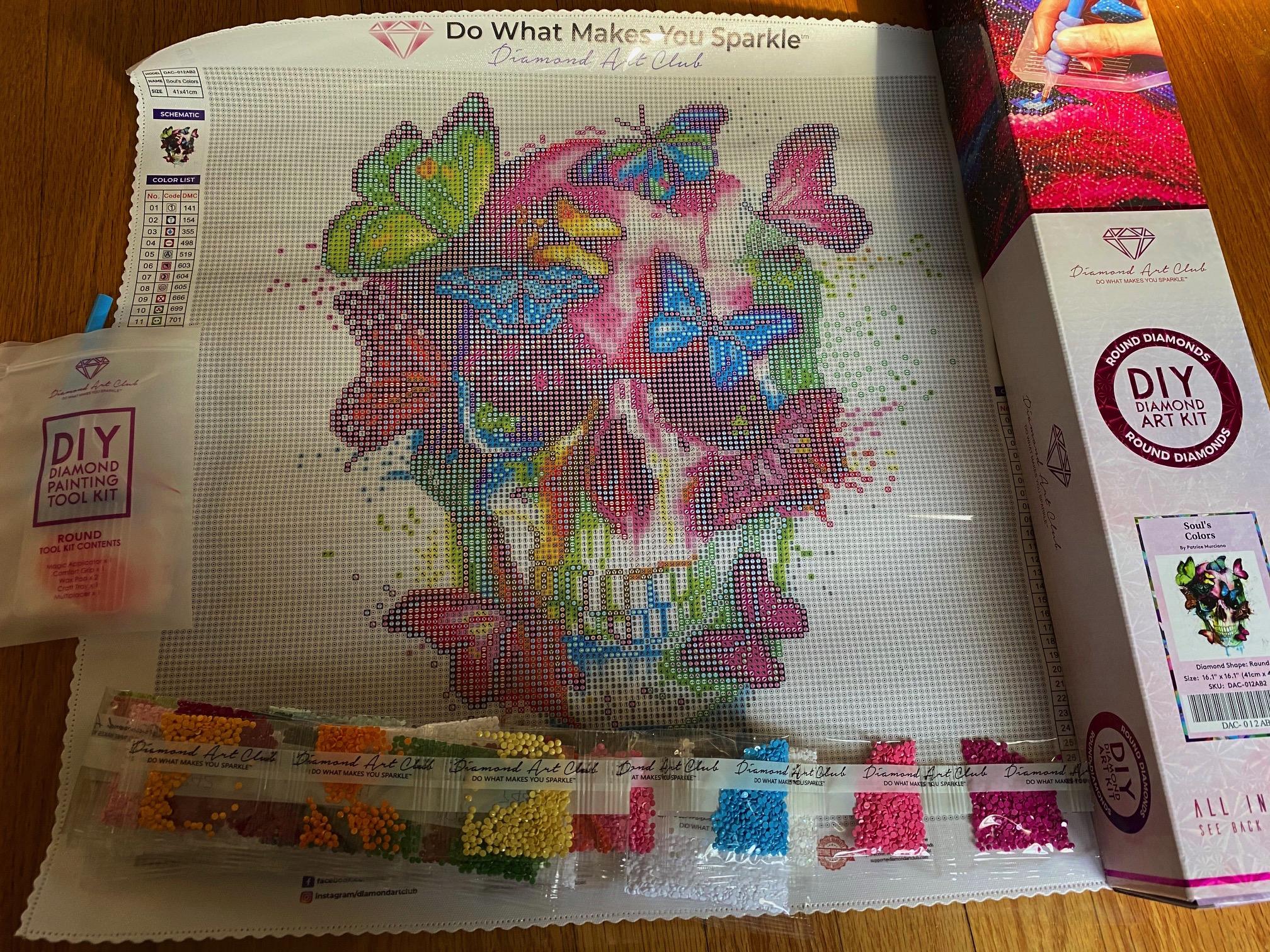 Diamond Art Club Skull kit