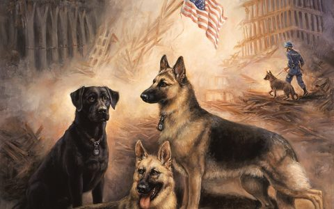 Art Contest: Salute to Search & Rescue Dogs