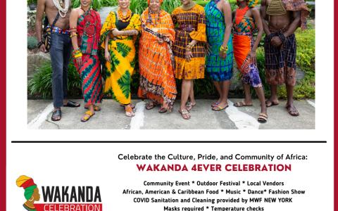 Wakanda Celebration in Mount Vernon