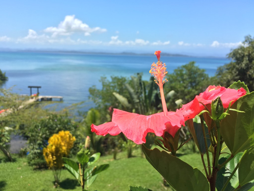 Bambuda Lodge in Bocas del Toro   TheWeekendJetsetter.com