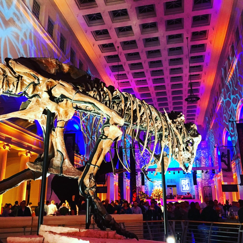 SUE, The Field Museum in Chicago | TheWeekendJetsetter.com