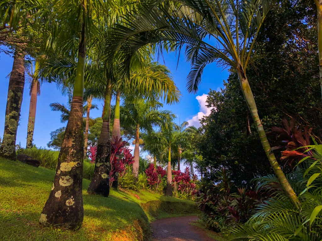 Road to Hana, Maui | TheWeekendJetsetter.com