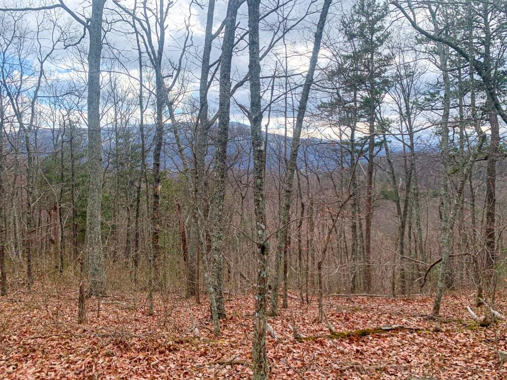 headricks top trail