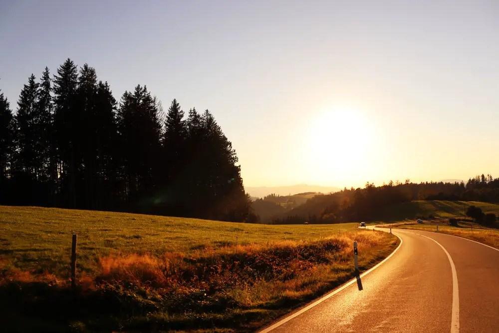 black forest road trip