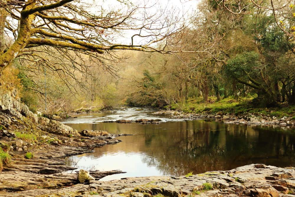 A river pool at Spitchwick