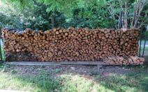Wood Pile Startup