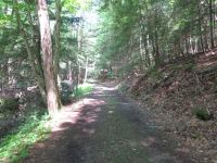 camp51
