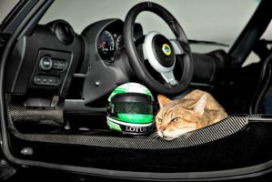 The new lineup of cat helmets from Lots are practical and desirable.
