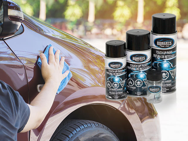 Roberts Paint Care