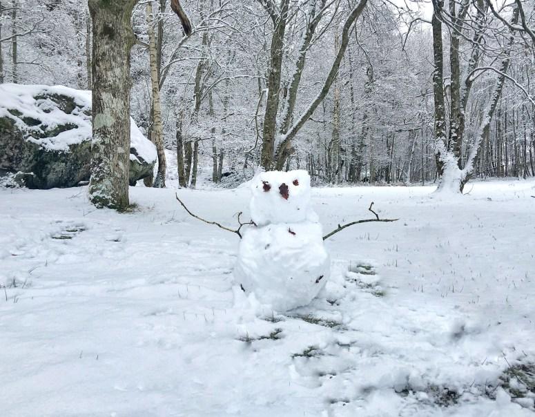 Snowman, Loch Katrine