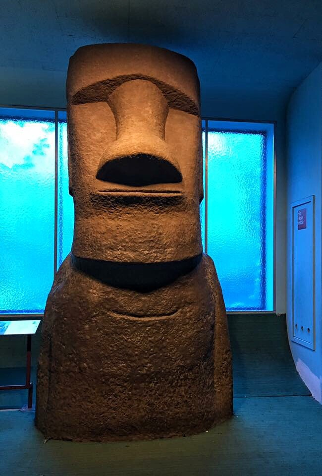Dum Dum, Museum of Natural History