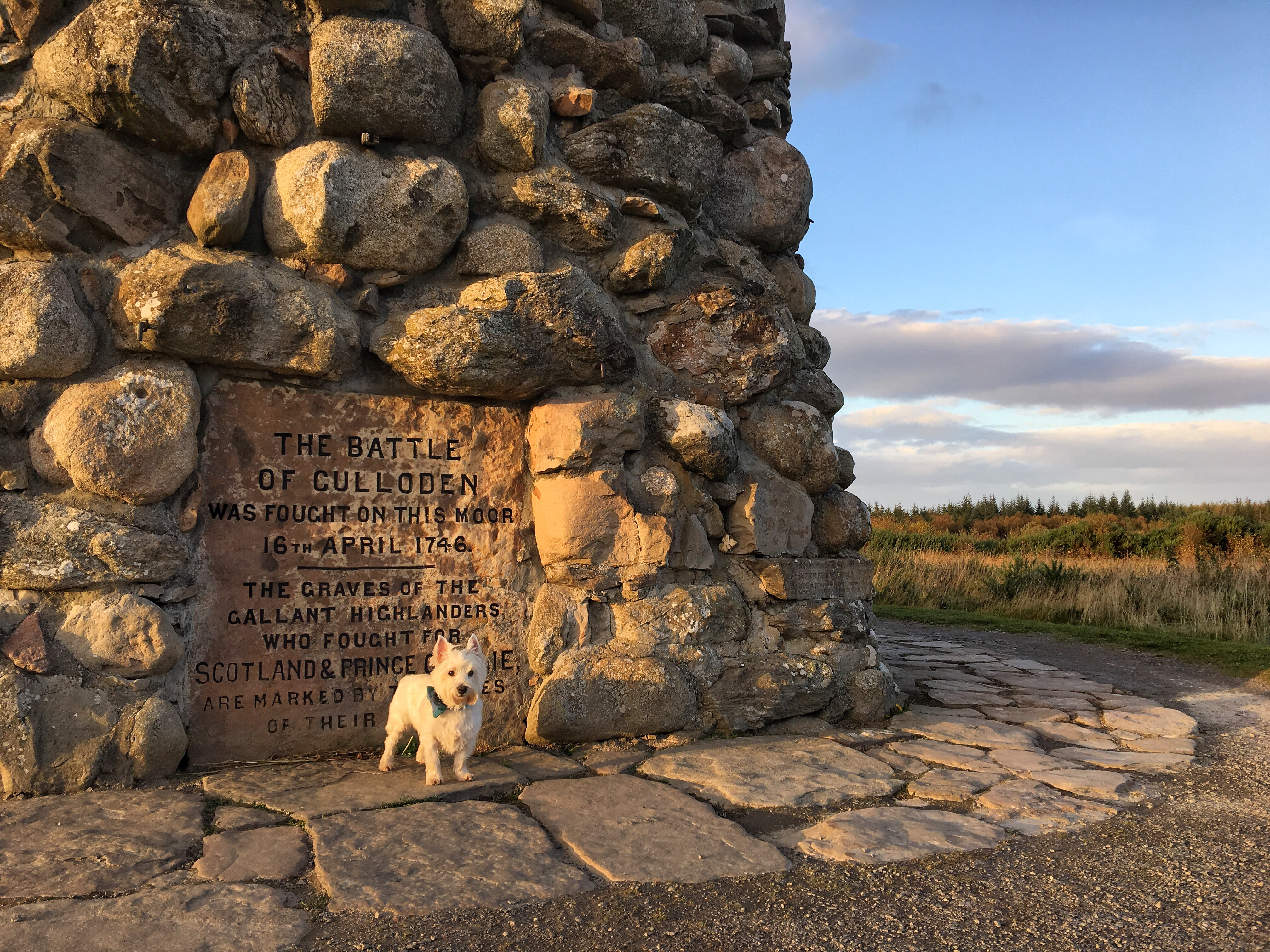 Road trip in the beautiful region of Moray and you'll