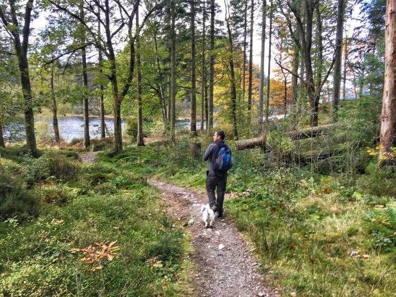 Loch Ard walk