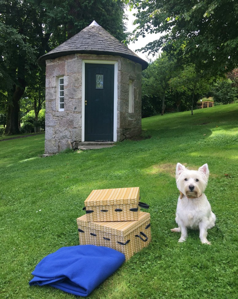 A picnic with Mercure