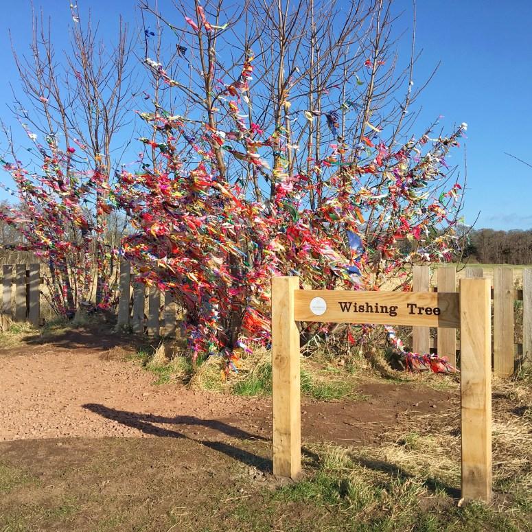 Archerfield Walled Garden