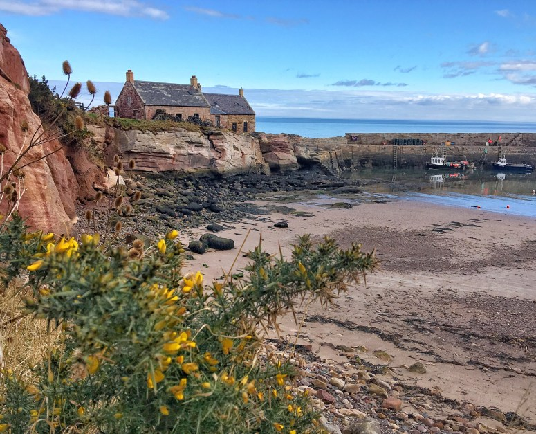 Cove Harbour, Scottish Borders
