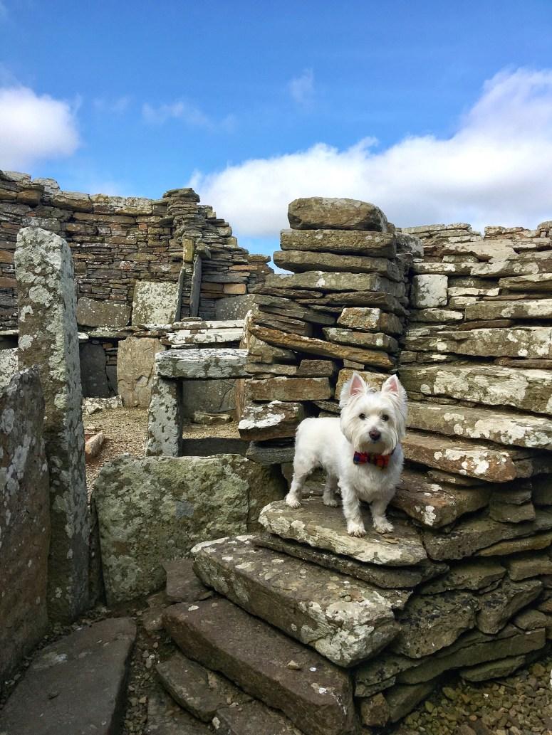 Broch of Gurness, Orkney