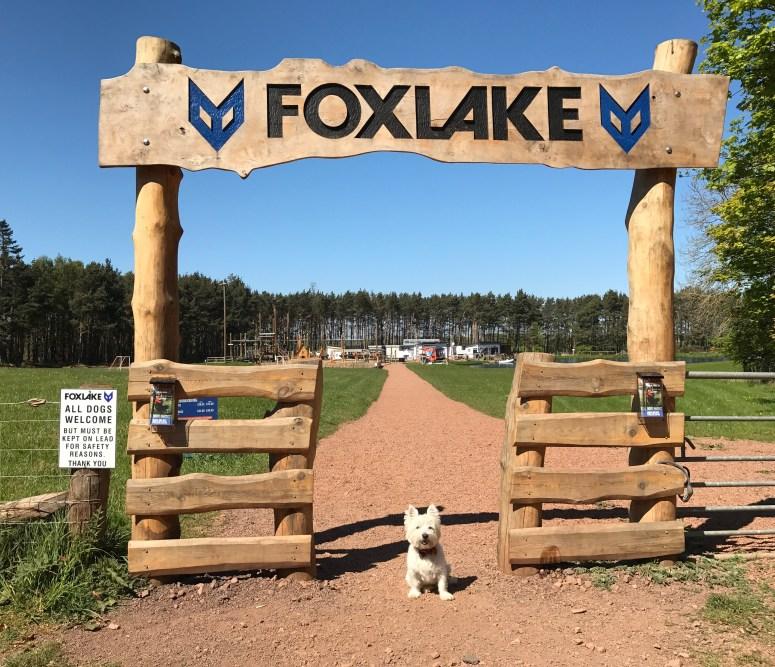 Foxlake Adventures