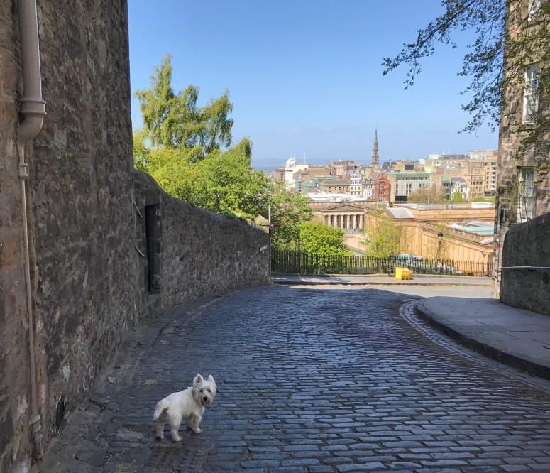 Ramsay Garden, Edinburgh
