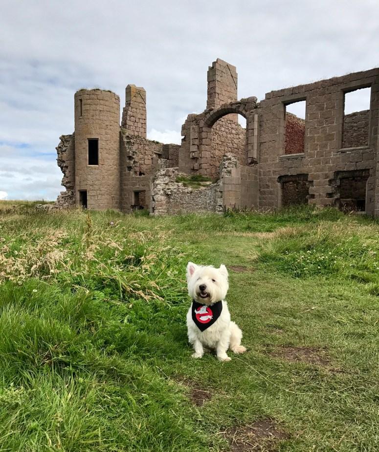 Slains Castle, Aberdeenshire Coastal Trail