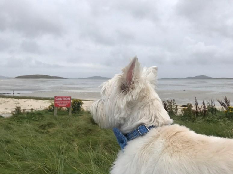 Scotland blog