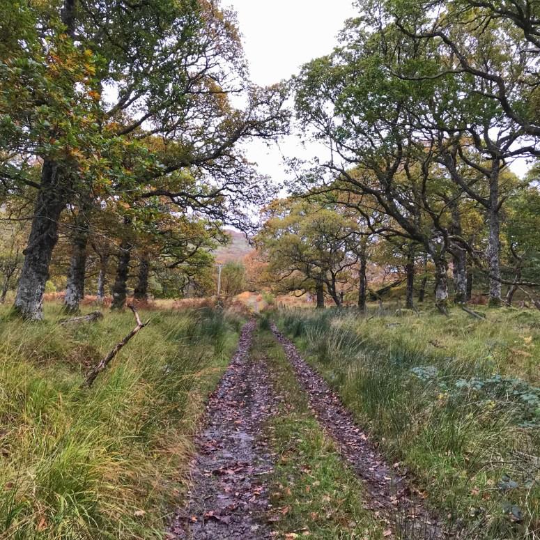 Rahoy Hills