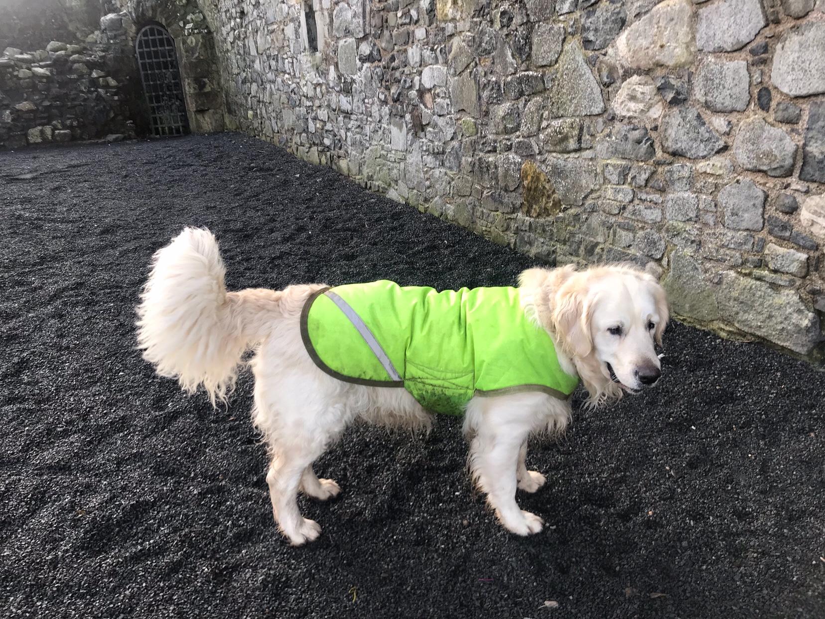 Exploring the beautiful Ayrshire coast to bring you my top