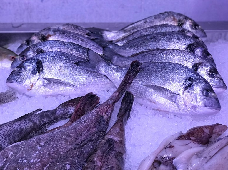 Fish Plaice, Glasgow