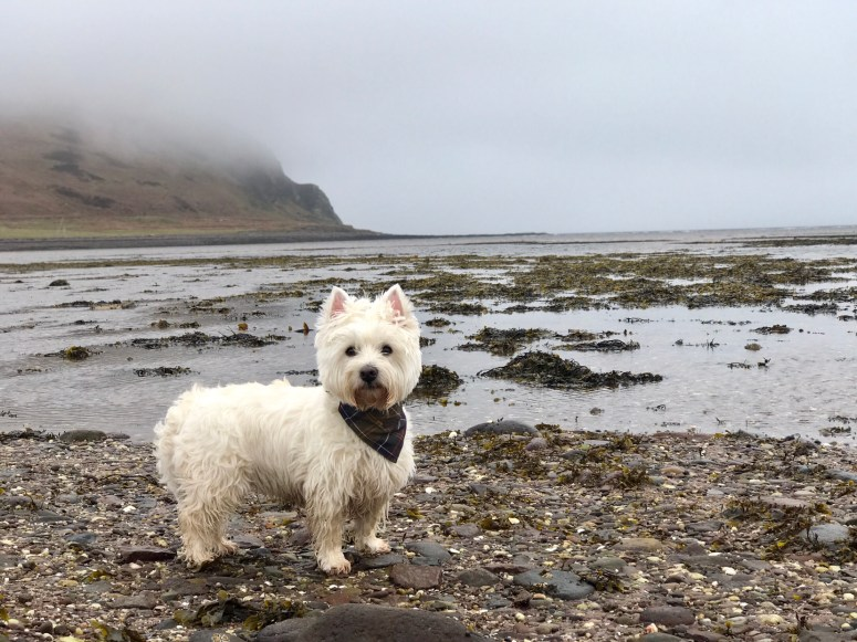 Davaar Island, Kintyre Peninsula