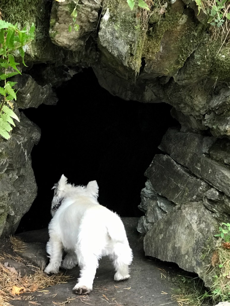 Ossian's Cave, The Hermitage