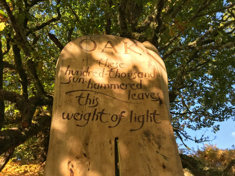 Corbenic Poetry Path, Perthshire