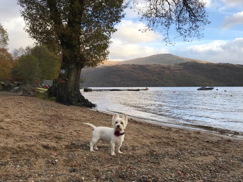 Loch Lomond Holiday Park, Argyll Holidays
