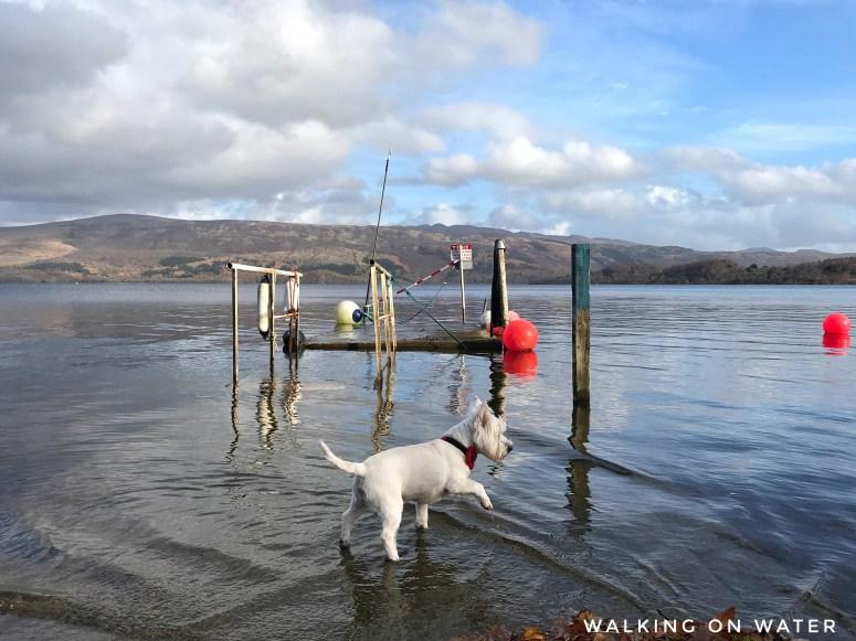 Scotland travel blogger